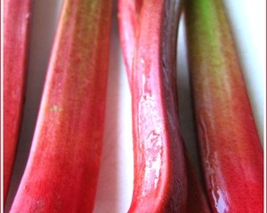 Rhubarb, the taste of spring