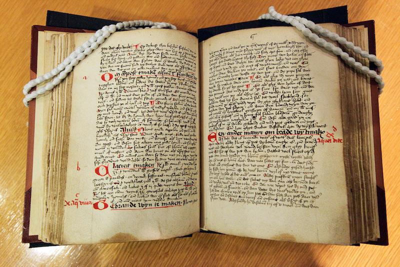 The original 1495 volume